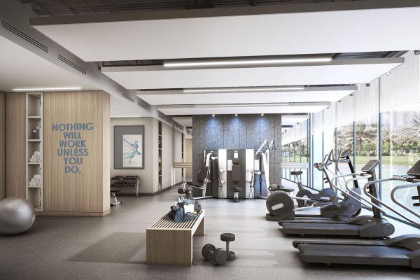 Wilton Terraces_Gym